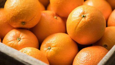 تصویر از قیمت خرید پرتقال