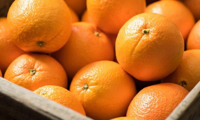 قیمت خرید پرتقال